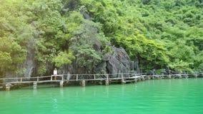 Le bourdon tourne autour de la fille se tenant sur le pont près de la haute falaise clips vidéos