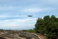Le bourdon vole au-dessus du terrain inhabité Photos libres de droits