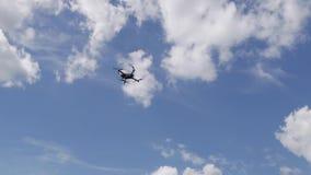 Le bourdon vole dans le ciel banque de vidéos