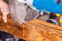 Le bourdonnement a vu des coupes un bois photos libres de droits