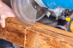 Le bourdonnement a vu des coupes un bois image libre de droits