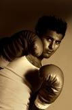 Le boxeur Images stock