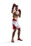 Le boxeur de Professionl est isolé sur le blanc Photo stock