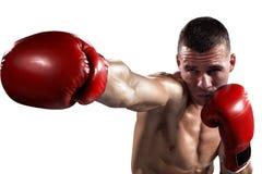 Le boxeur de Professionl est isolé sur le blanc Photos stock