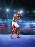 Le boxeur de Professionl se tient sur l'anneau Photographie stock libre de droits
