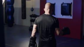 Le boxeur de vue de postérieur fait des exercices, chauffe des muscles dans des ses bras et se prépare au combat, mouvement lent clips vidéos