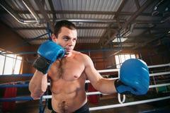 Le boxeur a pris le support Image stock