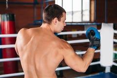 Le boxeur a pris le support Images libres de droits