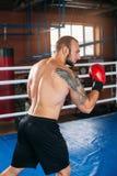 Le boxeur a pris le support Photographie stock libre de droits