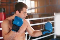 Le boxeur a pris le support Photos stock