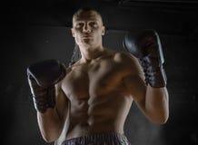 Le boxeur professionnel se tient dans la position de combat Photo libre de droits