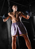 Le boxeur professionnel se tient dans la position de combat Image stock