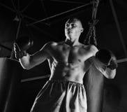 Le boxeur professionnel se tient dans la position de combat Photo stock