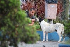 Le Brésil - le mendiant partageant la nourriture reste avec le chien Photo libre de droits