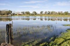 Le Brésil, Pantanal, ferme inondée Image stock