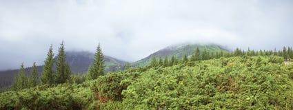 Le brouillard est allé vers le bas sur les pentes de montagne photographie stock