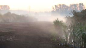 Le brouillard rampe sur la route banque de vidéos