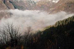 Le brouillard sur les montagnes et les forêts Photos libres de droits