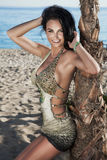 Le brunettdamen som poserar på stranden. Royaltyfri Bild