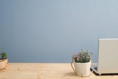 Le bureau avec la fleur de rose de rose et le milii d'euphorbe fleurissent sur le pot de fleur de terre cuite Photos stock