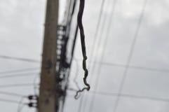 Le câble électrique se laissent tomber vers le bas du poteau électrique Photographie stock libre de droits