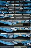 Le câble LAN se relient à l'unité de serveur photo stock