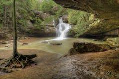 Le cèdre tombe l'Ohio Photographie stock libre de droits