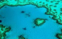 Le ` célèbre de récif de coeur de ` dans l'Australie photographie stock libre de droits