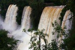 Le côté argentin d'Iguassu tombe en hiver Images stock