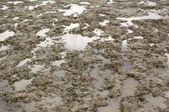 Le côté boueux de plage pendant la marée inférieure Photo stock
