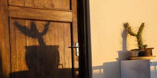 Le cactus dans l'élevage de pot moule l'ombre sur le mur pendant que le soleil place Image libre de droits