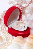 Le cadeau de l'amoureux Photo stock