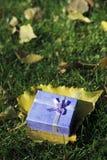 Le cadeau de l'automne Images libres de droits