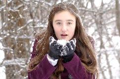 Le cadeau de l'hiver Images libres de droits