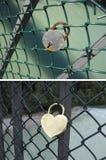 Le cadenas comme symbole de l'amour Image stock