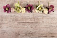 Le cadre de fond de Pâques avec le vintage de fleurs de ressort et d'oeufs de pâques dénomment l'espace de copie Images libres de droits