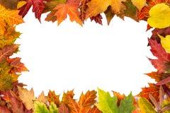 Le cadre de fond a isolé la noce colorée de feuilles d'automne i Images libres de droits