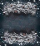 Le cadre de fond de Noël d'hiver avec le hoar et la neige a couvert des branches de sapin de cônes, vue supérieure image libre de droits