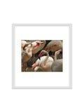 le cadre de photo d'isolement avec le chemin de coupure pour décorent, intérieur, Photographie stock