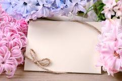 Le cadre de ressort entouré par la jacinthe fleurit, l'espace des textes Photo stock