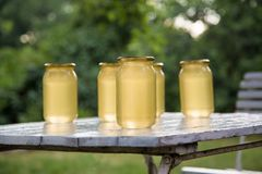 Le cadre de ruche de rucher avec des abeilles cirent la structure complètement du miel frais d'abeille en nids d'abeilles sur les photographie stock