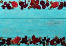 Le cadre plat de configuration du cramoisi d'automne part et des noix sur un en bois Image libre de droits