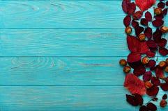 Le cadre plat de configuration du cramoisi d'automne part et des noix sur un en bois Photo stock