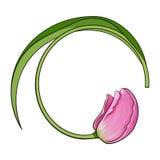 Le cadre rond a formé par la fleur rose de tulipe, endroit pour le texte Image libre de droits