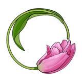 Le cadre rond a formé par la fleur rose de tulipe, endroit pour le texte Images stock