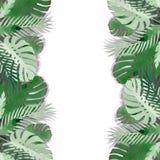 Le cadre tropical de feuilles a fait avec le papercraft avec l'ombre, d'isolement sur le fond blanc Feuillage exotique photographie stock libre de droits