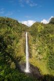 Le cadute di Akaka, Hawai immagini stock libere da diritti