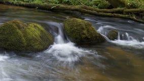 Le cadute di Golitha, Bodmin attraccano, Cornovaglia, Regno Unito Fotografia Stock
