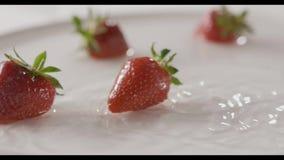 Le cadute rosse mature della frutta della fragola del primo piano in un piatto dell'acqua con spruzza e cade dell'acqua Bugia di  stock footage