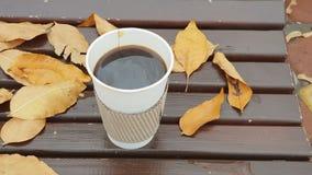 Le café à aller sur le banc avec le jaune part dans le parc d'automne clips vidéos
